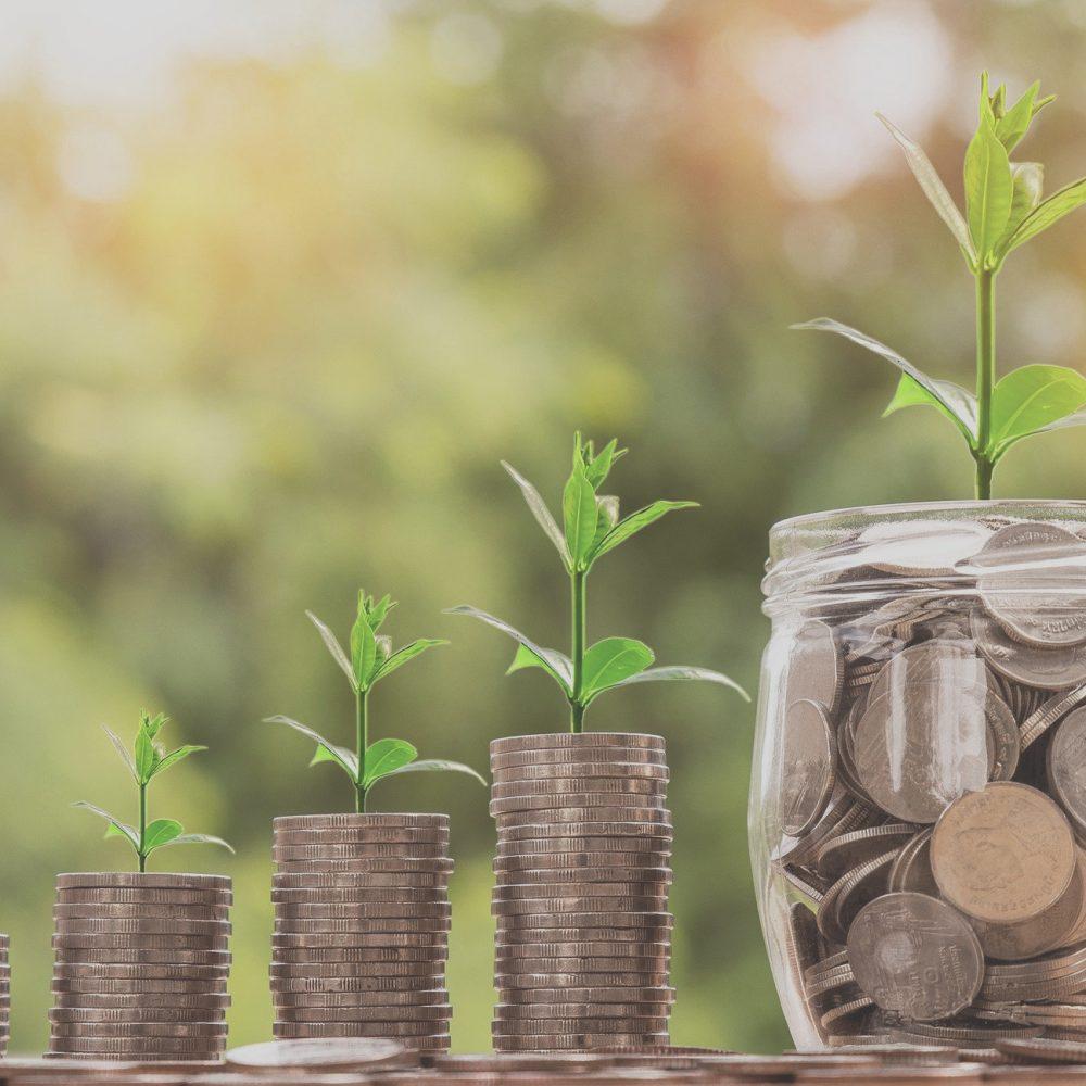 tips voor een geldinzamelactie potje met geld en stapels munten met plantjes