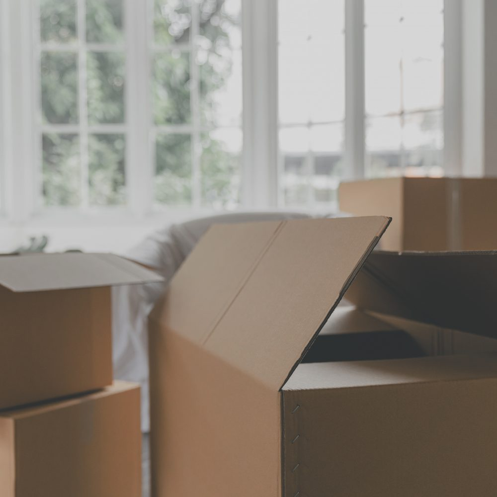 Open kartonnen dozen thinking outside of the box