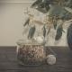 Butterfly Magic thee van het Melkhuisje in glazen pot met thee-ei en plant achteraan