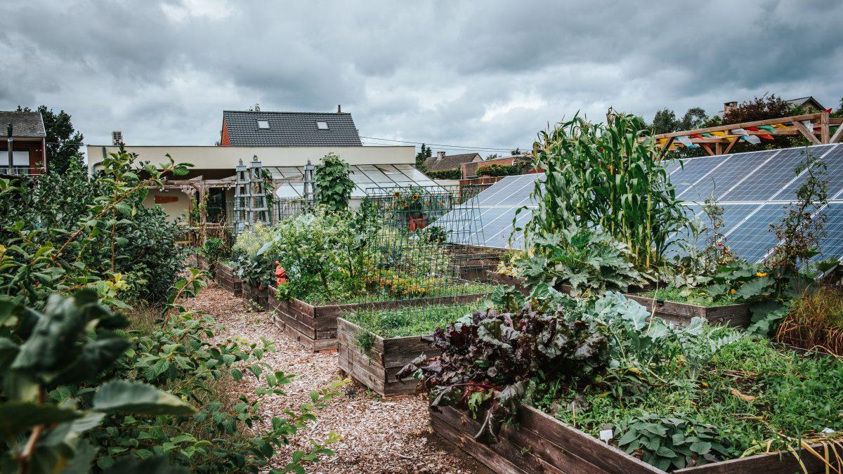 eetbare tuin van het melkhuisje